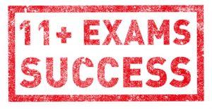 11 plus success motif
